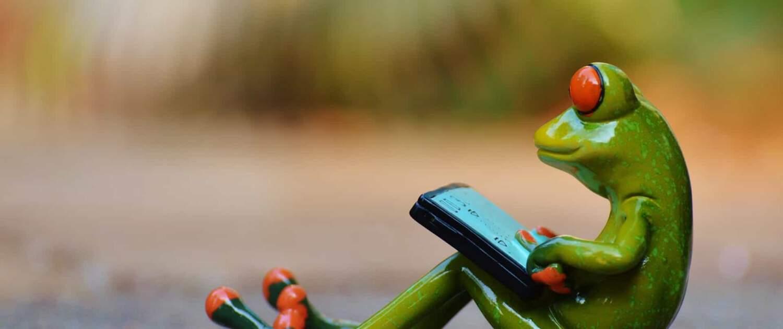 Frosch auf der Straße sitzend mit Tablet auf dem Schoß