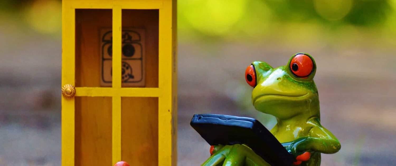 Frosch vor einer Telefonzelle mit Tablet in der Hand