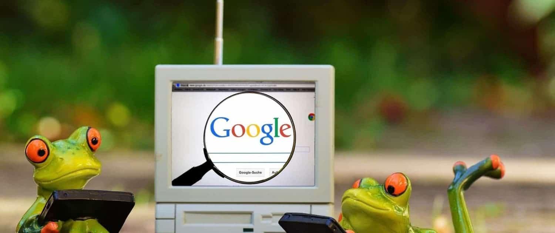 Zwei Frösche vorm PC die googlen